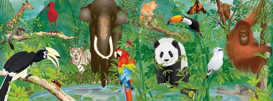 Credit: Wildlife Reserves Singapore