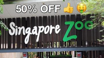 Singapore Zoo Safra Promos