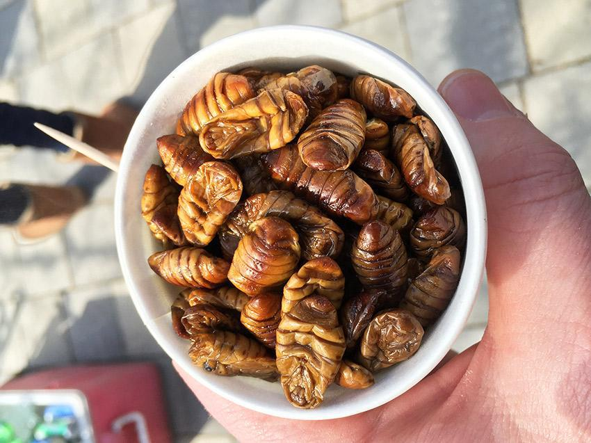 Beondegi (Steamed Silkworm)